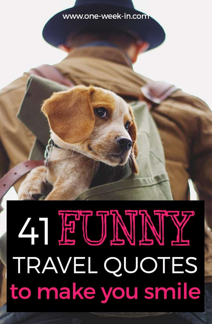 Funny Travel Quotes To Make You Laugh Until You Cry Collection 2019