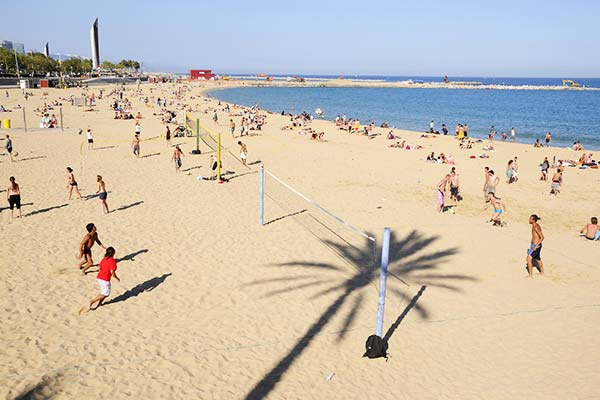 Walk through the golden sands of La Barceloneta Beach