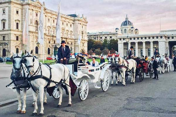 Take time and appreciate Vienna on a horse ride