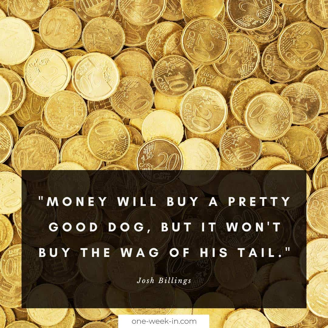 Money will buy a pretty good dog, but it won't buy the wag of his tail