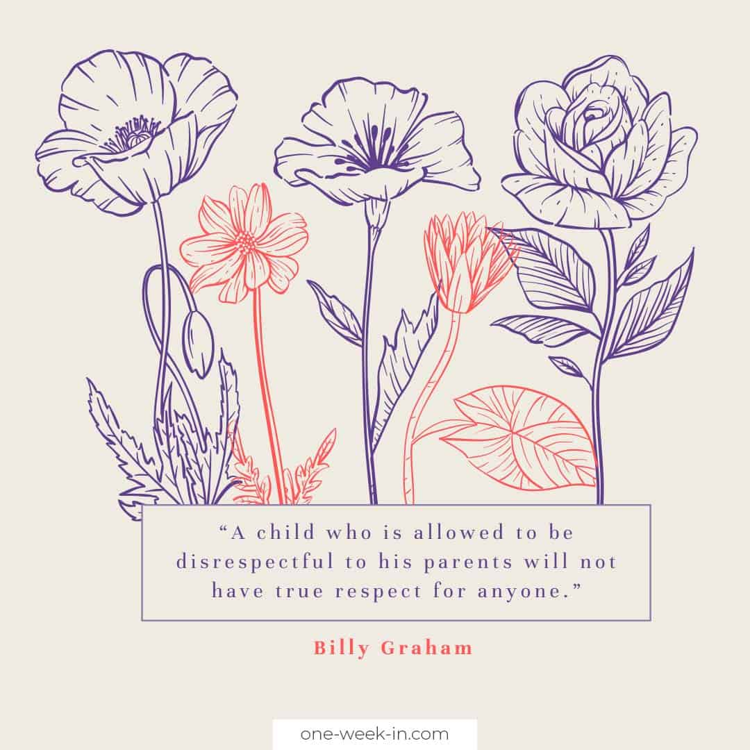 A child who is allowed to be disrespectful to his parents will not have true respect for anyone