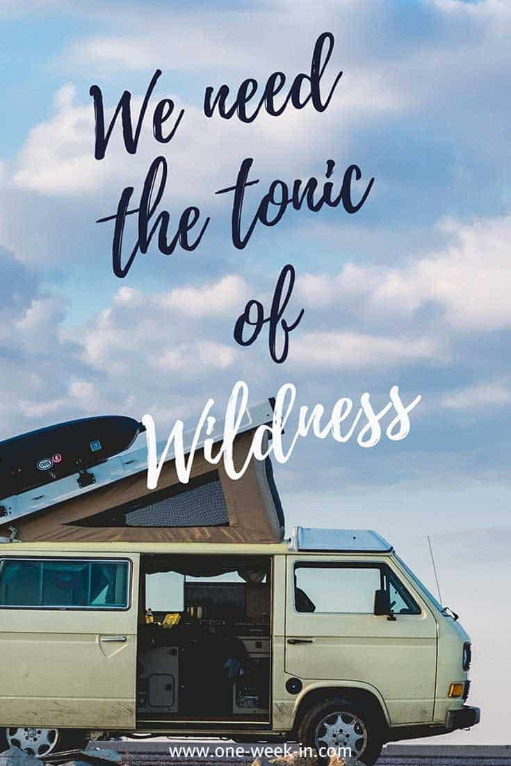 We need the tonic of wildness